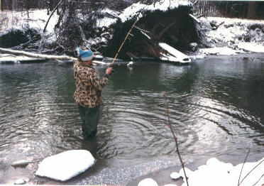 Steelhead fishing above RTE 394 in western New York State.