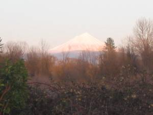 Mt Mcloughlin with early March snow