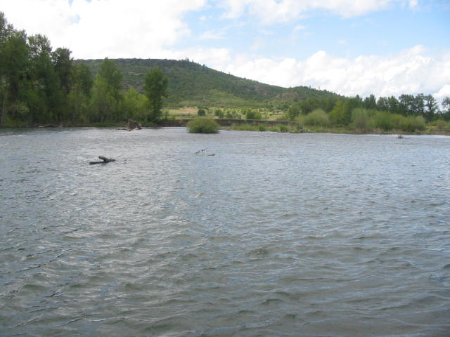 A flooded gravel bar with small, fast chutes where fish will pass.