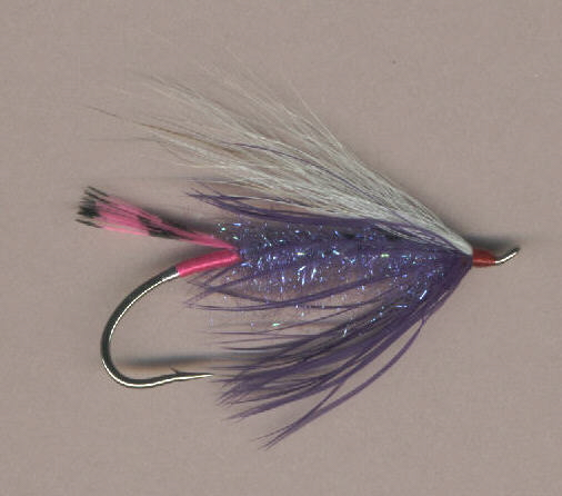 Summer steelhead fly.