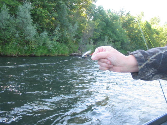 The steelhead pattern called The Skunk.