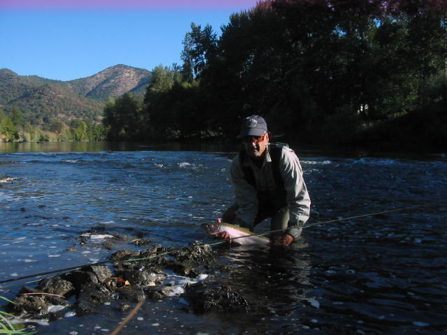 Rogue Guiden with middle Rogue River steelhead.