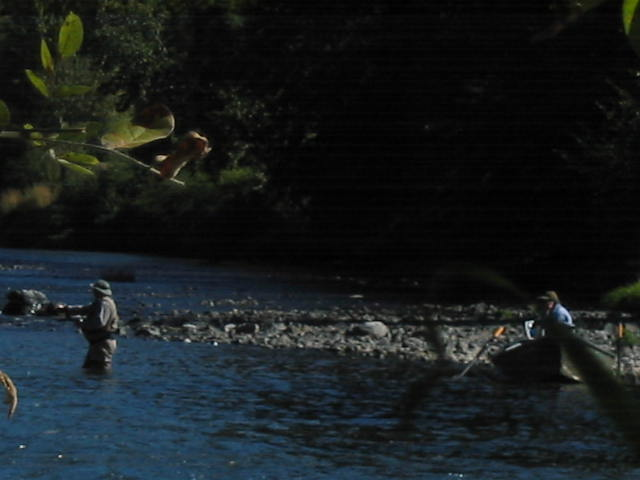 A fly angler working the water below spawning fall chinook