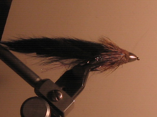 A long and indicing coldwater steelhead fly.