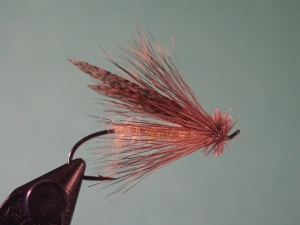 Bill McMillan's Steelhead Caddis, a good pattern for hot summer and fall days on the Rogue.