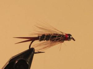 A  nymph pattern generally called the Prince. I often fish this small nymph as the chaser fly in tadem with a Carpetbagger Stonefly Nymph. The steelhead like both, so why not present both at the same time?