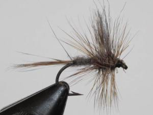 The Adams dry-fly. A good pattern to have for the early hatches on the Rogue River