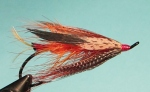 A bright orange steelhead fly with cinnamon turkey wings set Dee style.