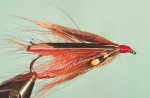White tipped turkey tail wings on this Dee-style fly pattern.