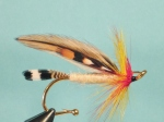 An adaptation of the Cain River series of flies, by C. Jim Pray of Eureka, California. This steelhead version was especially successful on the Klamath River. Originally tied for Atlantic salmon, the Cain River series was also good for trout and bass.